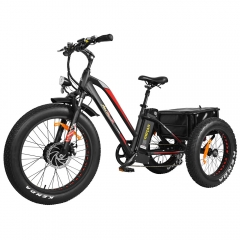 Addmotor MOTAN Electric Trike Tricycle 500W 3 Wheel Electric Bicycle Cargo 24 Inch Fat Tire E-Trike M-350
