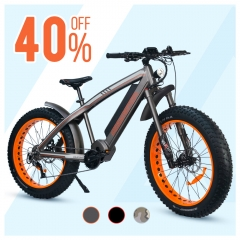 【August Special 40% OFF】Wildtan M-5600 1000W Mid-Drive Motor Hunting Electric Bike