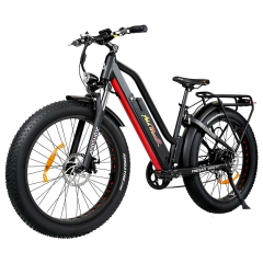 M-450 P7 Electric Bike